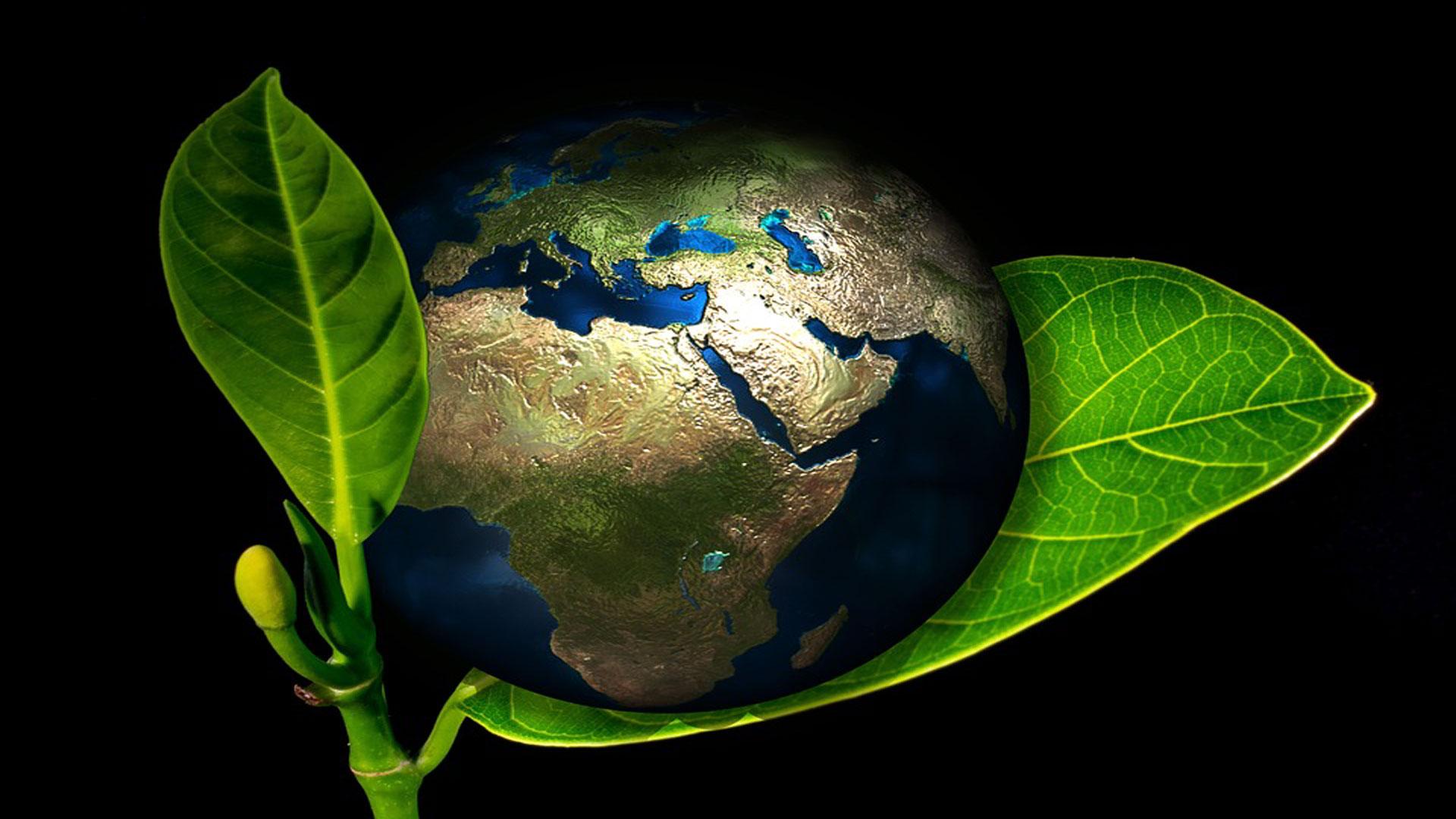Día-de-la-Tierra,-una-celebración-para-concienciar-sobre-la-eficiencia-energética-1920
